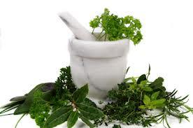 Herbal Depkes Untuk Pelangsing